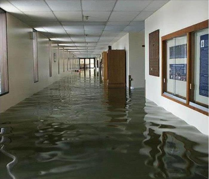 Commercial Commercial Water Damage Assessment