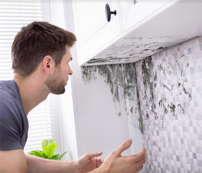 man looking at mold on a wall