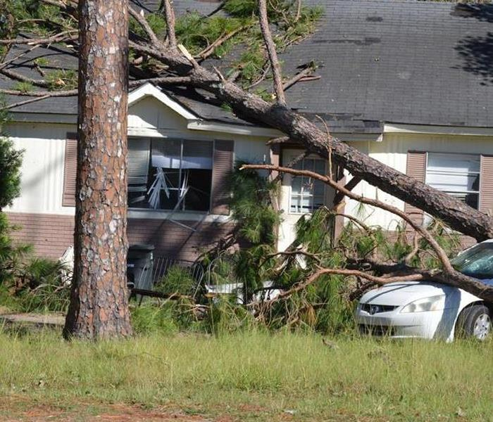 a tree that has fallen on a home