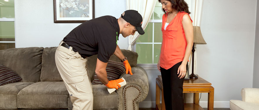 Salem, MA carpet upholstery cleaning